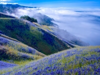 above big sur_outdoor photographer natures colors