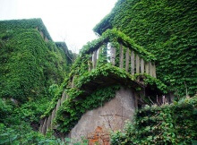Chinese village overtaken by mother nature